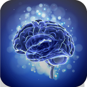 Brain Training: Touch in Order