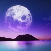 Moonlight beach wallpaper